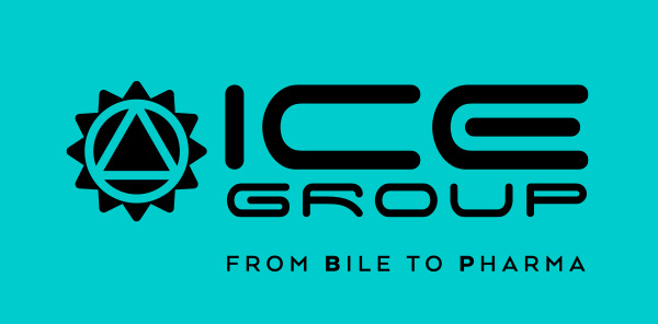 ICE Group